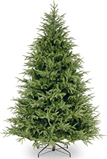 Best frasier fir tree Reviews