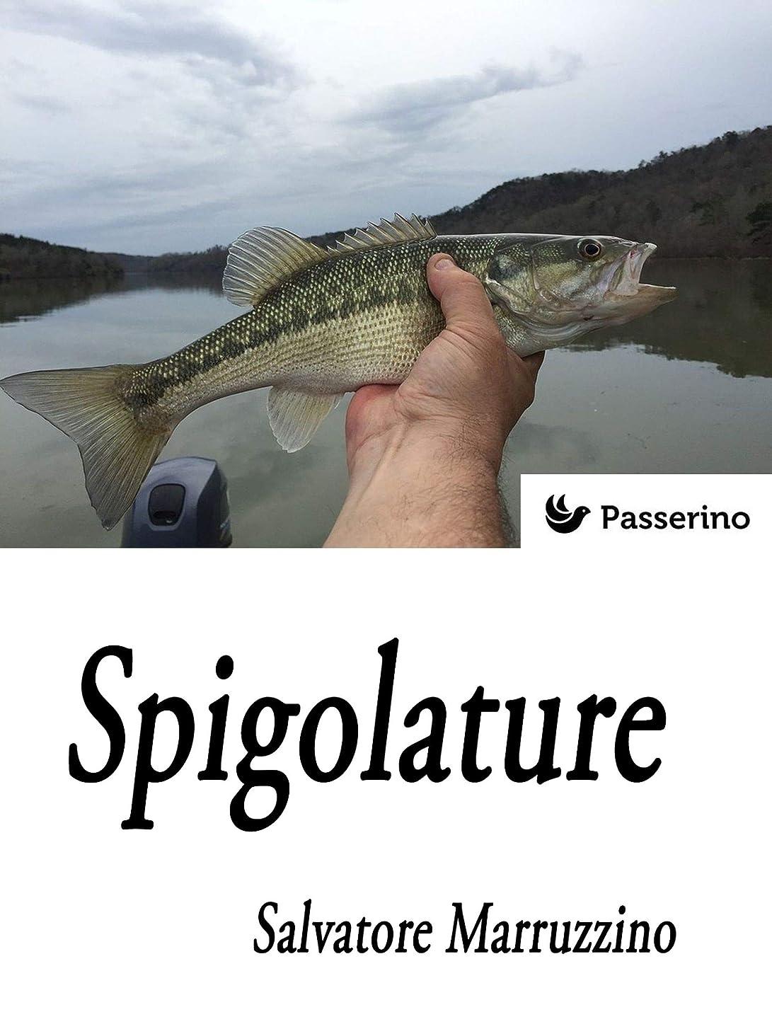 衣装死んでいる空いているSpigolature (Italian Edition)