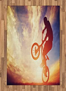 Ambesonne Modern Area Rug, Man on The Bike Performing Silhouette Under Hazy Sunlights Hobby Image Print, Flat Woven Accent Rug for Living Room Bedroom Dining Room, 4' X 5.7', Multicolor