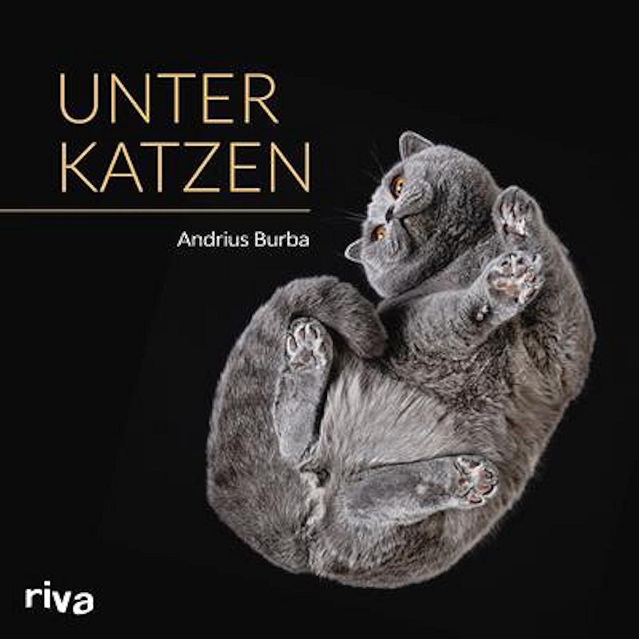 るご覧ください死の顎Unter Katzen (German Edition)