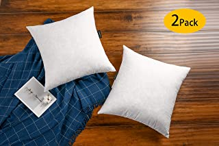 JA COMFORTS 22×22 Decorative Grey Goose Down Feather Throw Pillow Inserts(Set of 2)-100% Cotton Cover, Square, Machine Wash, White