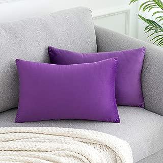 WLNUI Soft Velvet Lavender Purple Throw Pillow Covers Set of 2 Decorative Pillow Case Lumbar Cushion Cover for Sofa Couch Home Farmhouse Decor 12x20 Inch 30x50 cm