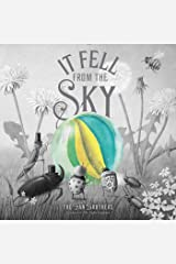 It Fell from the Sky Kindle Edition