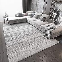 Living Room Area Carpet, Super Soft, Healthy and Environmentally Friendly Artificial Pile Foot Pad, No Fiber Shedding, Fad...