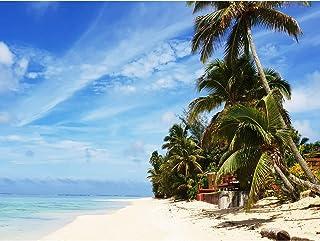 Koumu Rarotonga Cooköarna sommar strand blå himmel foto stort tryck affisch väggkonst dekor bild
