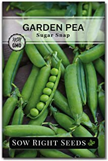 Sow Right Seeds - Sugar Snap Pea Seed for Planting - Non-GMO Heirloom Packet with Instructions to Plant a Home Vegetable ...