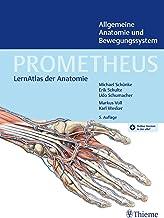 PROMETHEUS Allgemeine Anatomie und Bewegungssystem: LernAtlas der Anatomie (German Edition)