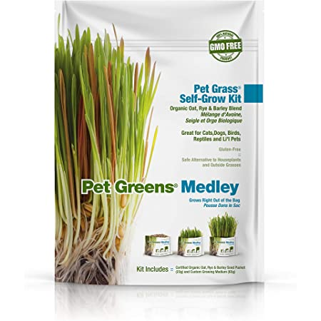 Pet Greens Live Cat Grass; Certified Organic & GMO-Free 100% Wheatgrass Or Variety Blend of Oat, Rye & Barley Grasses; Grown in The USA, Blue, One Size (57570)