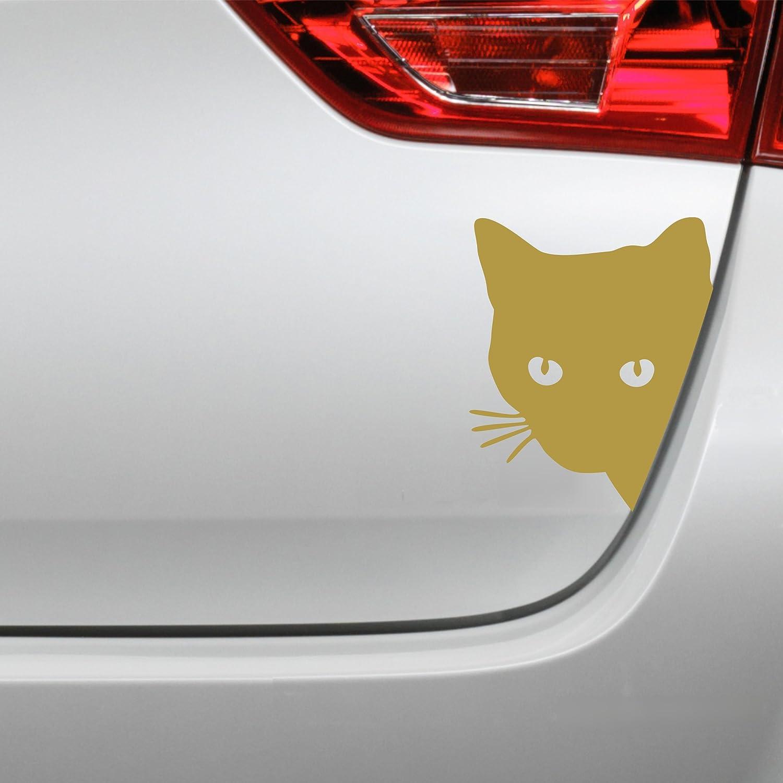 Folistick Katzenkopf Aufkleber Katze Autoaufkleber Dunkelgrau Auto