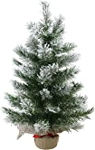 Northlight Pine Artificial Christmas Tree in Burlap Base, 24