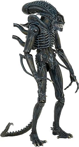 Unbekannt Star Bilder 51363  ab 1  4 arrior Aliens 1986 rsion Figur