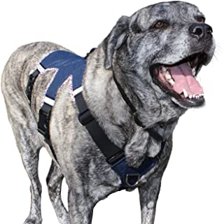 Best large breed leather dog harness Reviews