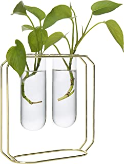 MyGift Desktop Planter Set with 2 Glass Tube Vases & Gold-Tone Metal Stand