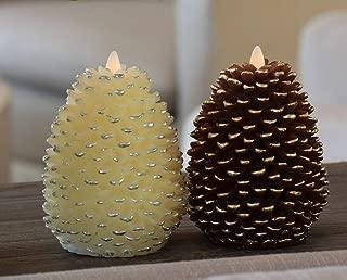 Best pine cones to buy Reviews