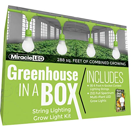 Miracle LED Greenhouse in a Box Daylight Plus Grow Kit for Indoor Plants - Includes 32 Absolute Daylight Plus Full 150W Replacement Grow Light Bulbs & 8 4-Socket Corded Light Fixture, Full Spectrum