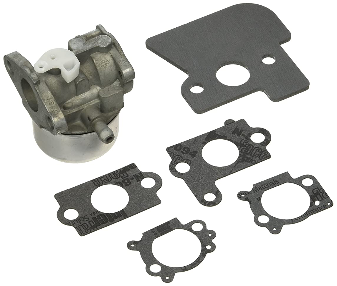 Briggs & Stratton 790120 Carburetor Replacement for Models 694202, 693909, 692648 and 499617 Replacement Part
