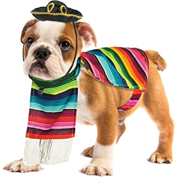 Skeleteen Mexican Serape Dog Costume - Cinco de Mayo Poncho and Sombrero Costumes for Pets