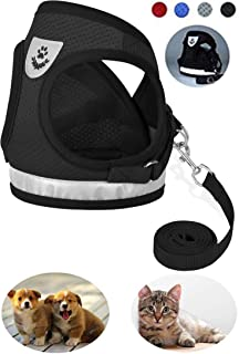 GAUTERF Dog and Cat Universal Harness with Leash Set,...
