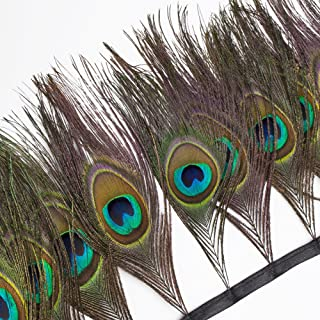 wanjin Peacock Feathers Fringe Trim Craft Feathers Clothing Accessories Pack of 1 Yards