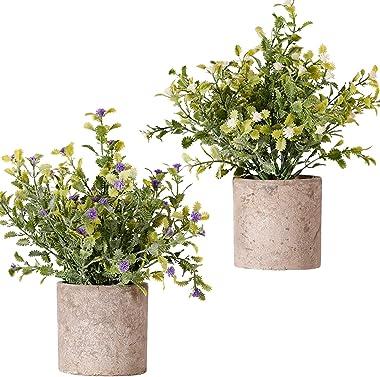 FagusHome Artificial Plants Potted 2 Pcs Mini Potted Artificial Flowers Babies Breath Flowers Fake Gypsophila Plants in Pot F