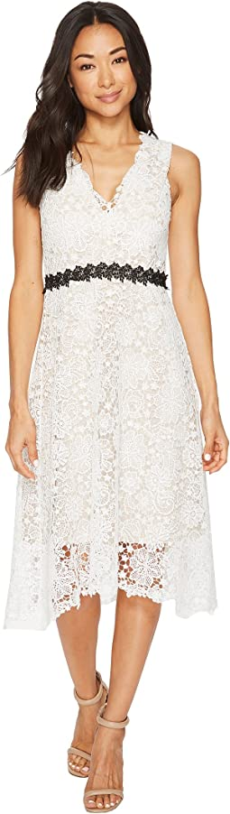 Donna Morgan Sleeveless Lace V-Neck Fit and Flare with Waist Detail