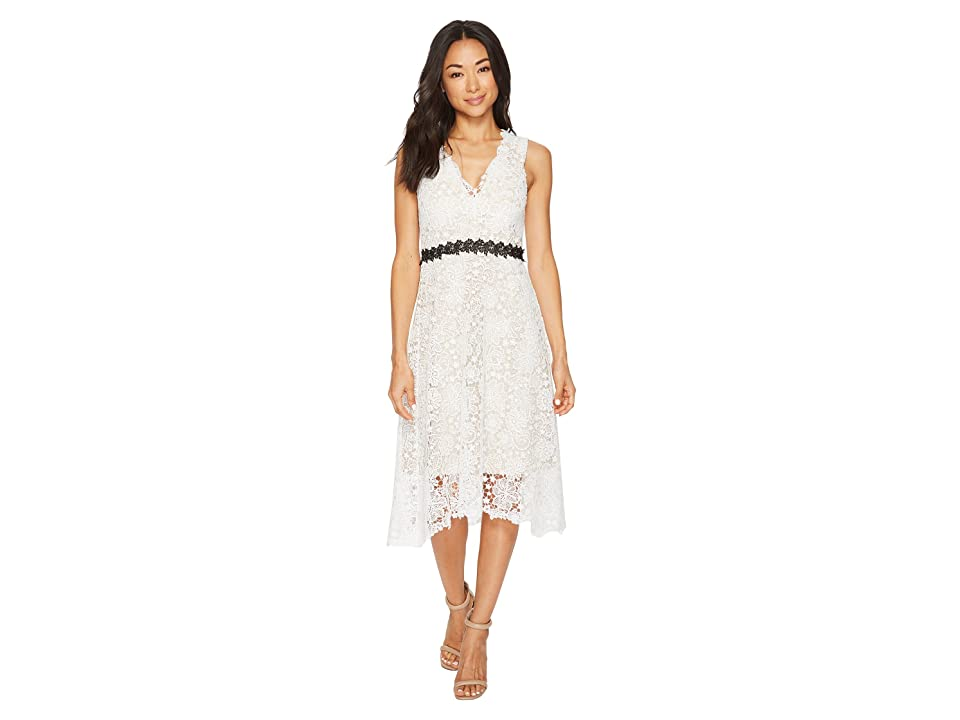 Donna Morgan Sleeveless Lace V-Neck Fit and Flare with Waist Detail (White Wash) Women