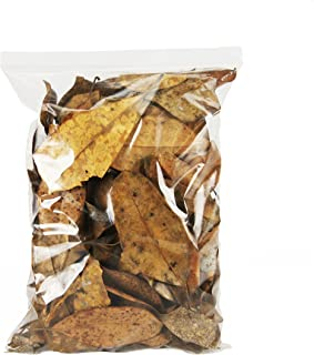 Best live oak leaf litter Reviews
