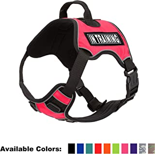 Dogline Quest No-Pull Dog Harness with 3D Rubber in Training Removable Patches Reflective Soft Comfortable Dog Vest with Q...