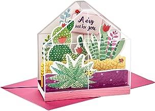 Hallmark Paper Wonder Displayable Pop Up Birthday Card (Succulents)