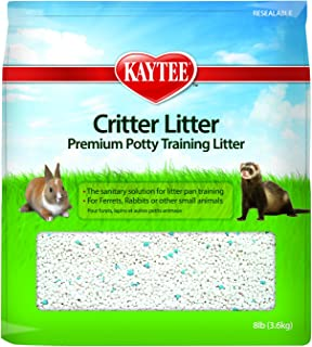 pet rat litter training