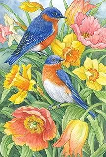 Toland Home Garden Eastern Bluebirds 28 x 40 Inch Decorative Spring Summer Bird Orange Flower House Flag