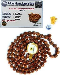Just Devotional - Certified Rudraksha Mala for Men and Women | Rudraksha mala 108 Beads Original/ 5 Mukhi Rudraksha mala 1...