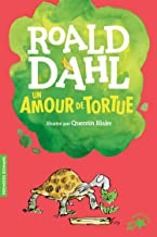 Un amour de tortue (French Edition)
