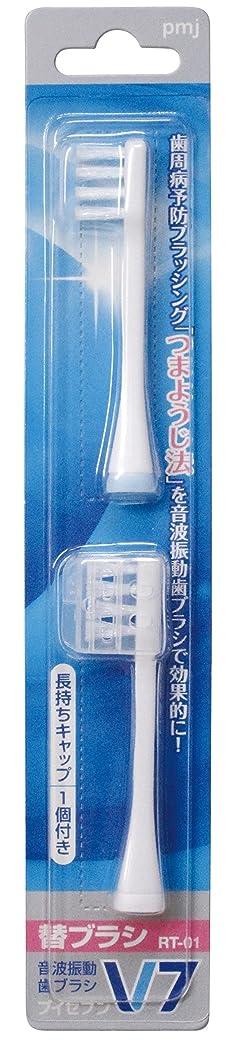 ランチョン不安言い換えるとつまようじ法 音波振動歯ブラシ V-7 専用替ブラシ