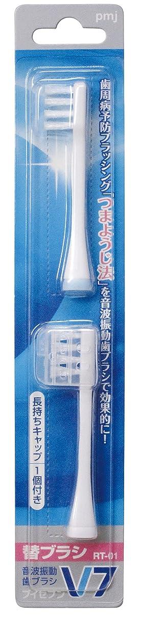 入植者ガードカナダつまようじ法 音波振動歯ブラシ V-7 専用替ブラシ