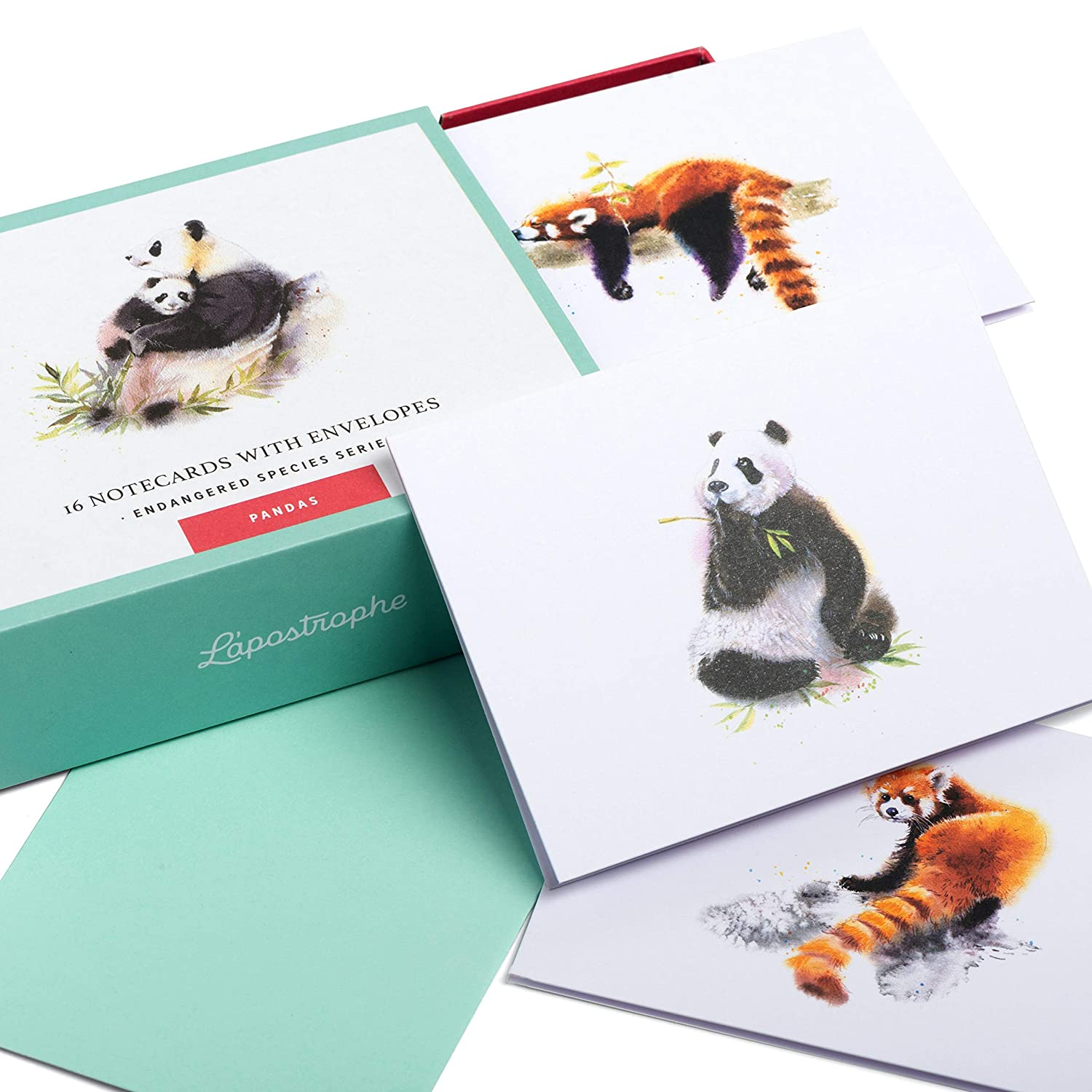 24. Panda Blank Note Cards with Envelopes