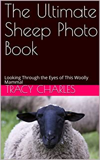 The Ultimate Sheep Photo Book: Looking Through the Eyes of This Woolly Mammal