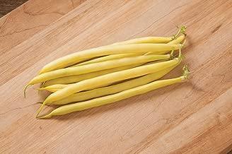 David's Garden Seeds Bean Bush Carson 7653 (Yellow) 100 Non-GMO, Open Pollinated Seeds