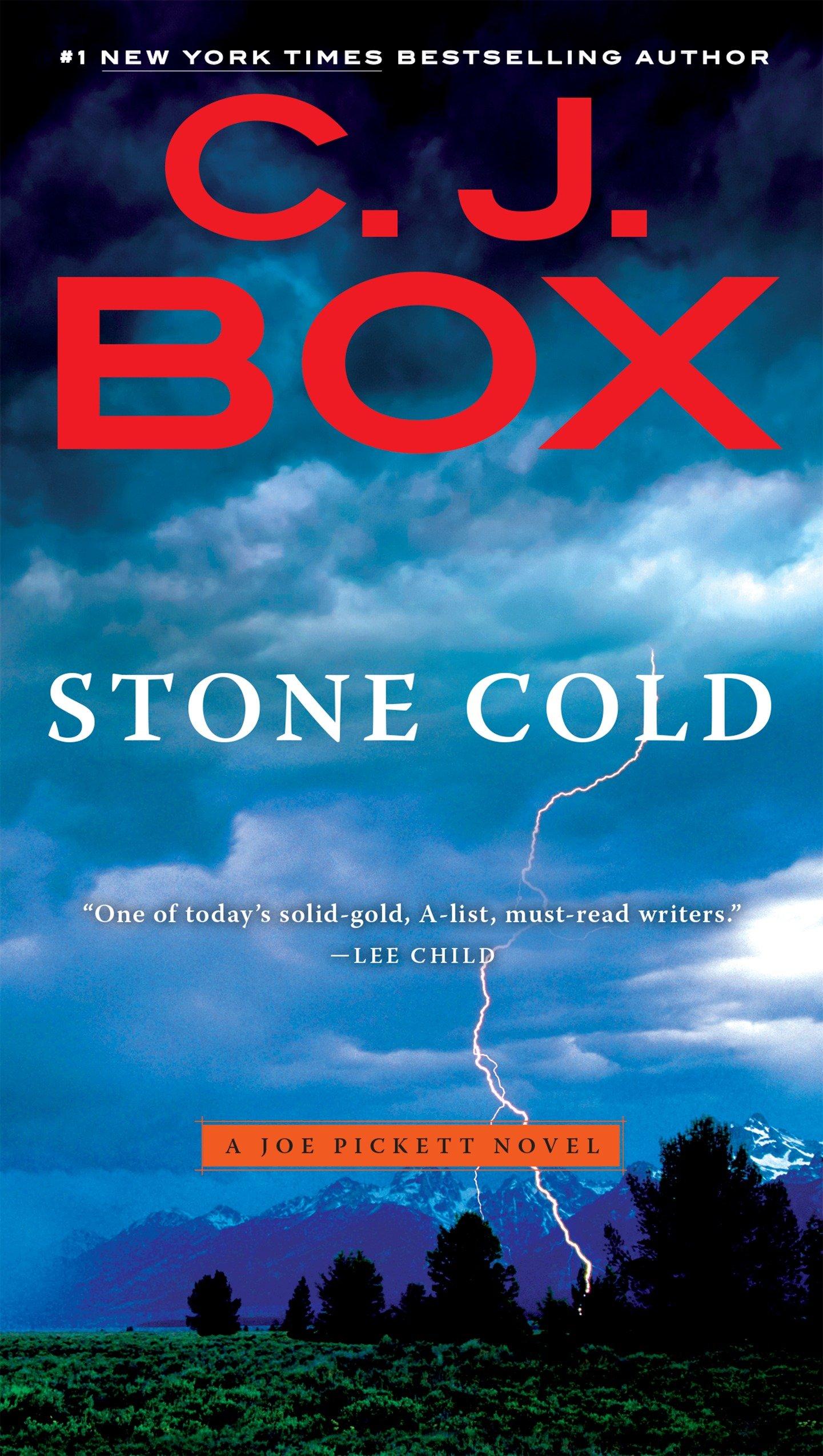 Stone Cold (A Joe Pickett Novel Book 14)