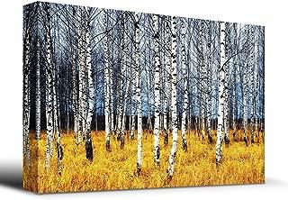 wall26 Beautiful Aspen Trees Fall Colors - Canvas Art Home Decor - 24x36 inches