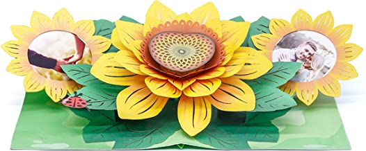 WOWPAPERART Sun Flower - 3D Pop Up Color Greeting Card for All Occasions Birthday, Love, Congrats, Good Luck, Anniversary, Get Well, Good Bye, Retirement, Thank You, Travel - Premium, Handcrafted