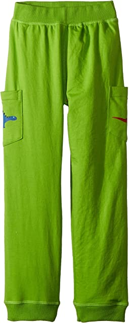 4Ward Clothing - PBS KIDS® - Dino Reversible Jogger Pants (Toddler/Little Kids)