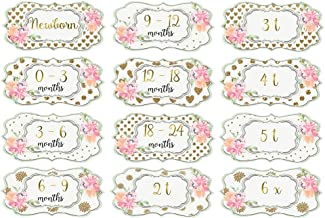 Mumsy Goose Girl Nursery Drawer Labels White Gold Floral Baby Clothes Organizers Girl Dresser Stickers