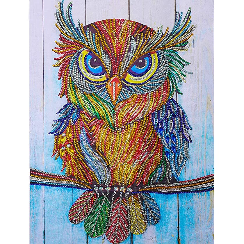 HuaCan Diamond Painting Kits for Adults DIY 5D Special Shape Partial Drill Crystal Rhinestone Embroidery Pictures Arts Craft for Home Wall Decor Owl A