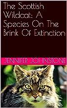 Mejor Wild Cat Species de 2020 - Mejor valorados y revisados