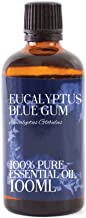 Mystic Moments Huile Essentielle Gommier Bleu Eucalyptus - 100ml - 100% Pure