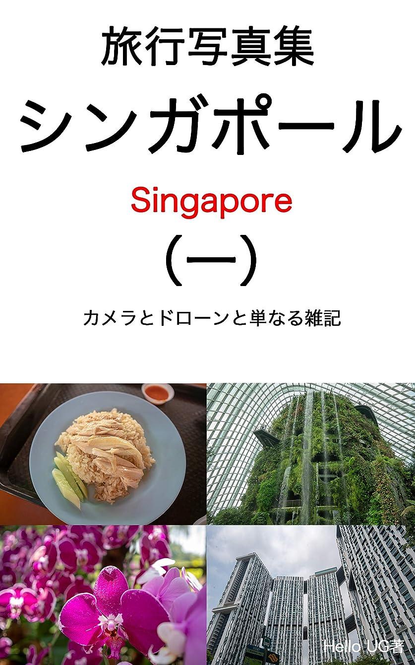 猫背車検索エンジン最適化シンガポール写真集カメラとドローンと単なる雑記(一) (UG BOOKS)