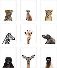 "9 Pack Safari Animal Poster Prints - Cute Baby Animal Wall Art - Nursery Room Decor (8"" x 10"", Unframed Card Stock)"
