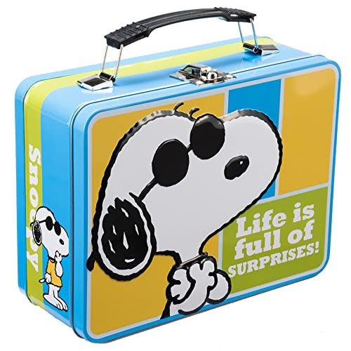 76387e6b0c6f Metal Lunch Boxes for Kids: Amazon.com