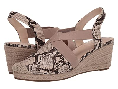 Bandolino Nila 3 (Brown Multi) Women